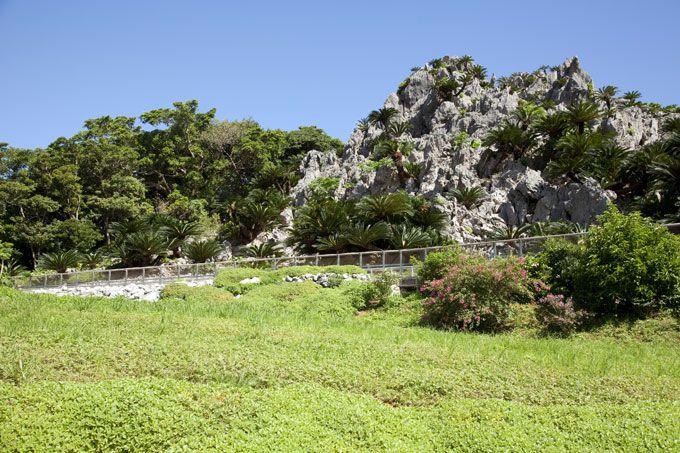 本島-大石林山