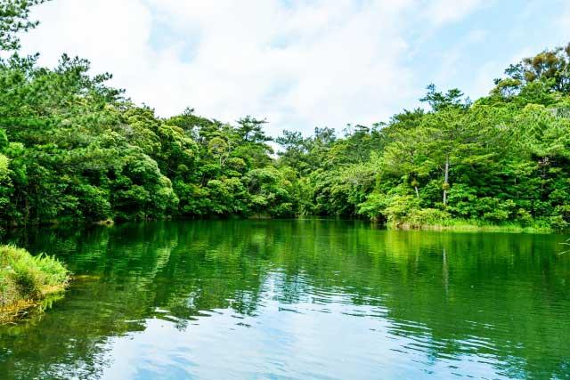 亜熱帯の豊かな自然やアスレチックコースが広がるビオスの丘