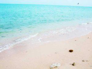 絶景スポット,聖域として大切にされている百名ビーチ