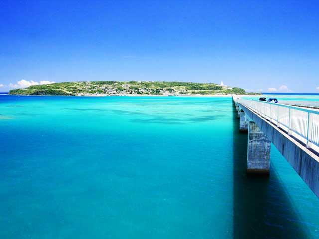 丸一日ウェディングフォトツアー 沖縄本島北部コース