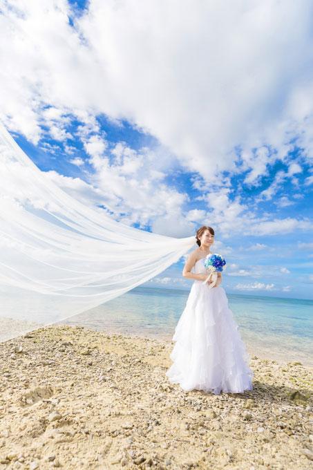 ベールと雲の彩りがドレス姿を美しく演出