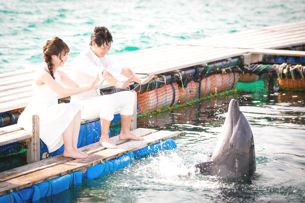 石垣島で、憧れのイルカと叶えるフォトウェディング♡