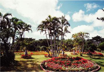 宮古島市熱帯植物園(体験工芸村)