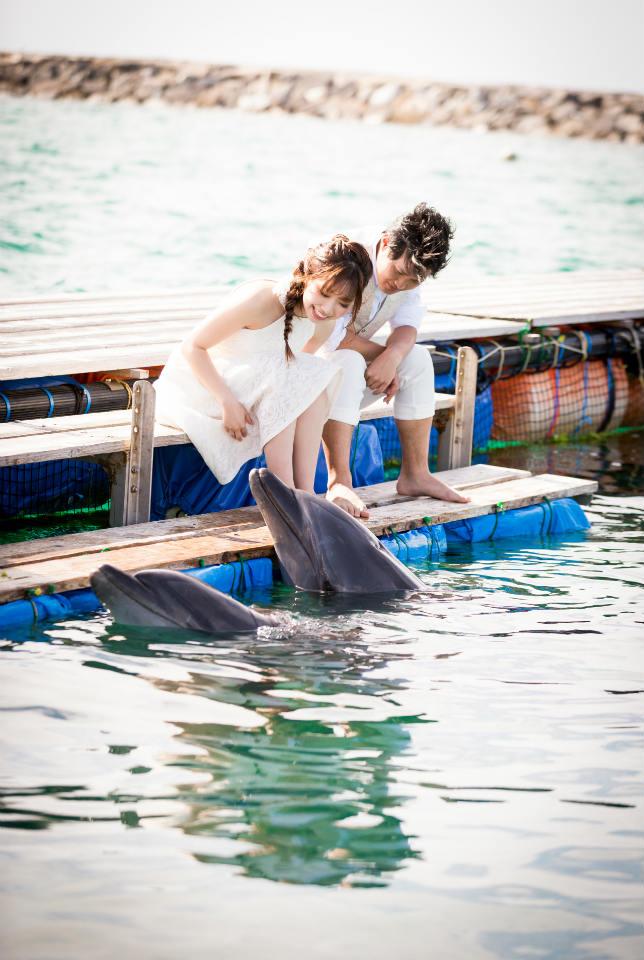 イルカとこんなに近くでご挨拶♡