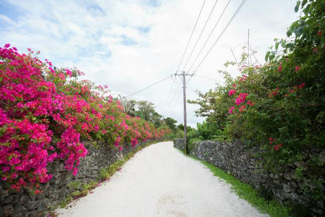 撮影プランおすすめランキング5位竹富島フォトウェディングプラン石垣島