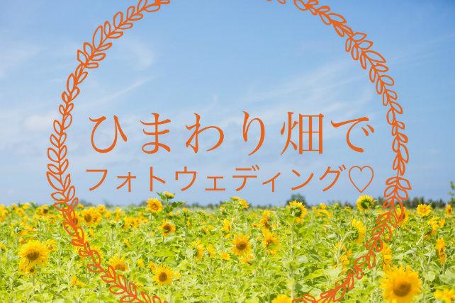 〔4~5月撮影限定〕ひまわり畑でフォトウェディング