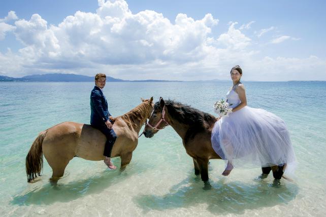 沖縄本島離島・乗馬フォトウェディングプラン