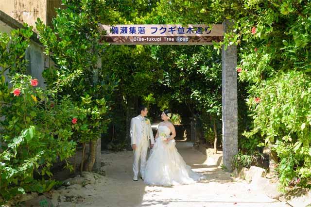 フクギ並木でのウェディングショット|沖縄ウェディングオンライン