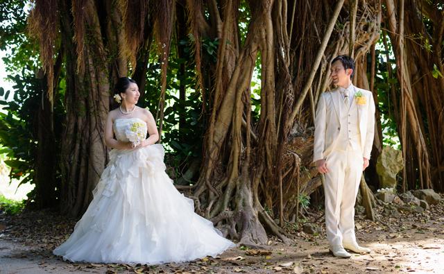 ガジュマルの木をバックにフォトウェディング|沖縄ウェディングオンライン