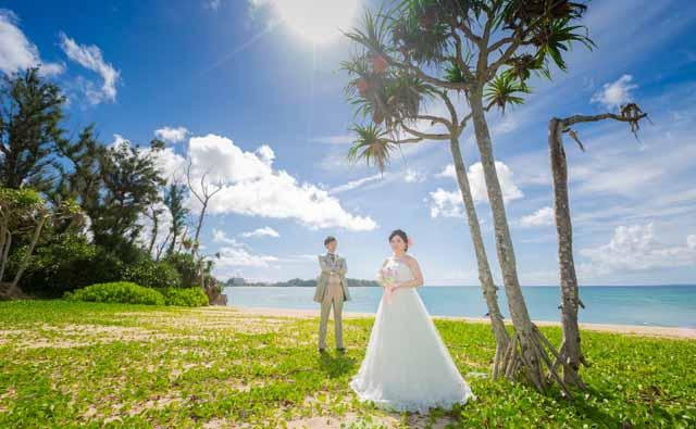 やしの木をバックにフォトウェディング|沖縄ウェディングオンライン